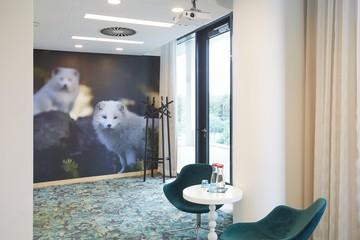 Berlin   Arctic Fox image 0