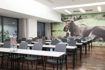 Berlin   Elk image 0