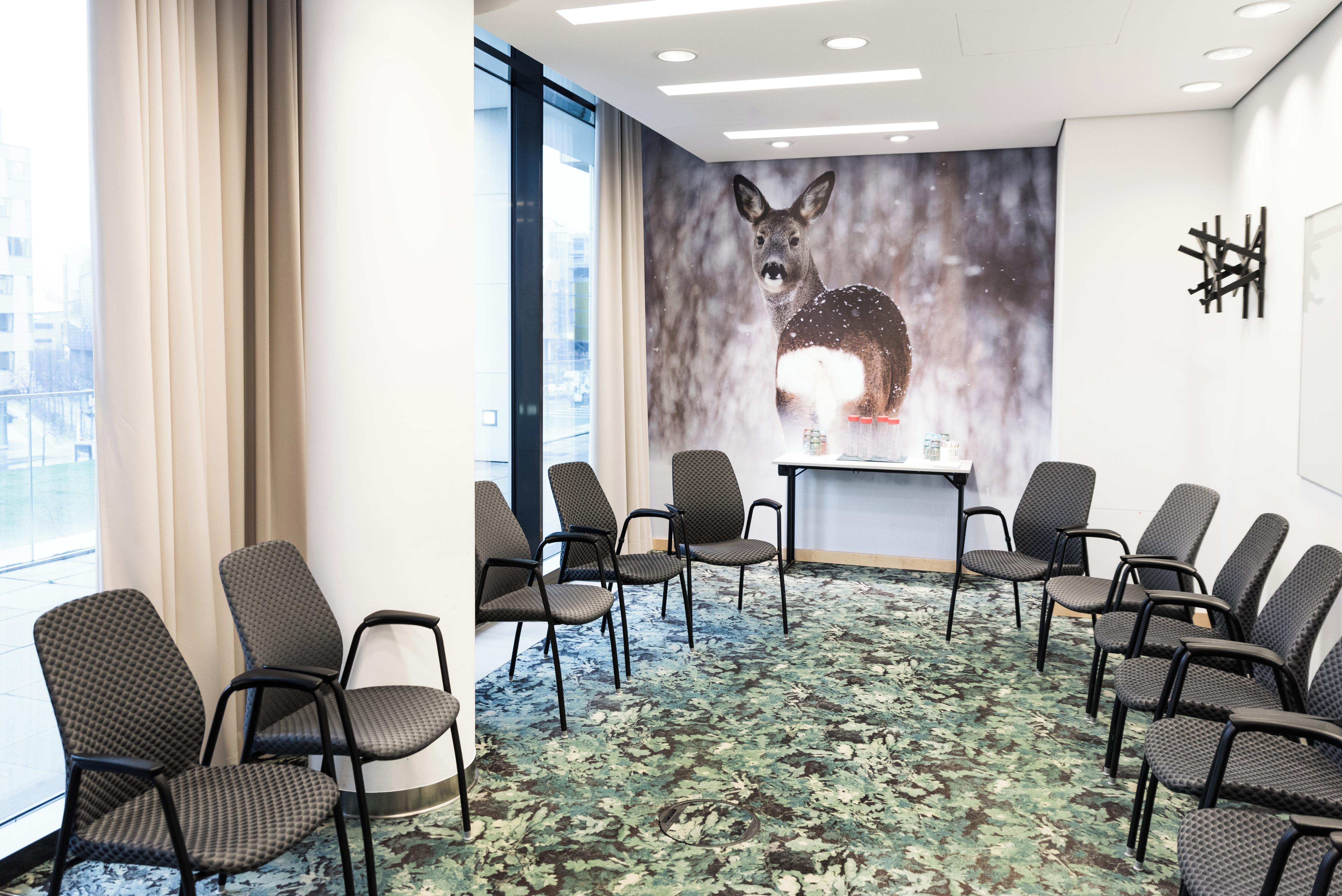 Berlin   Roe Deer image 0